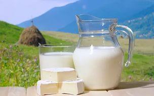Почему скисает молоко ХЗ почему Хочу Знать Эрудитов Нет  Молоко вкусный и очень полезный продукт Молоко помогает малышам расти и развиваться В свежем молоке содержится много важных питательных веществ
